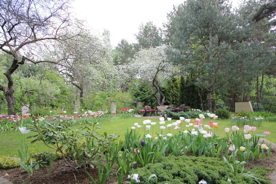J_architects_Tulip Garden_13