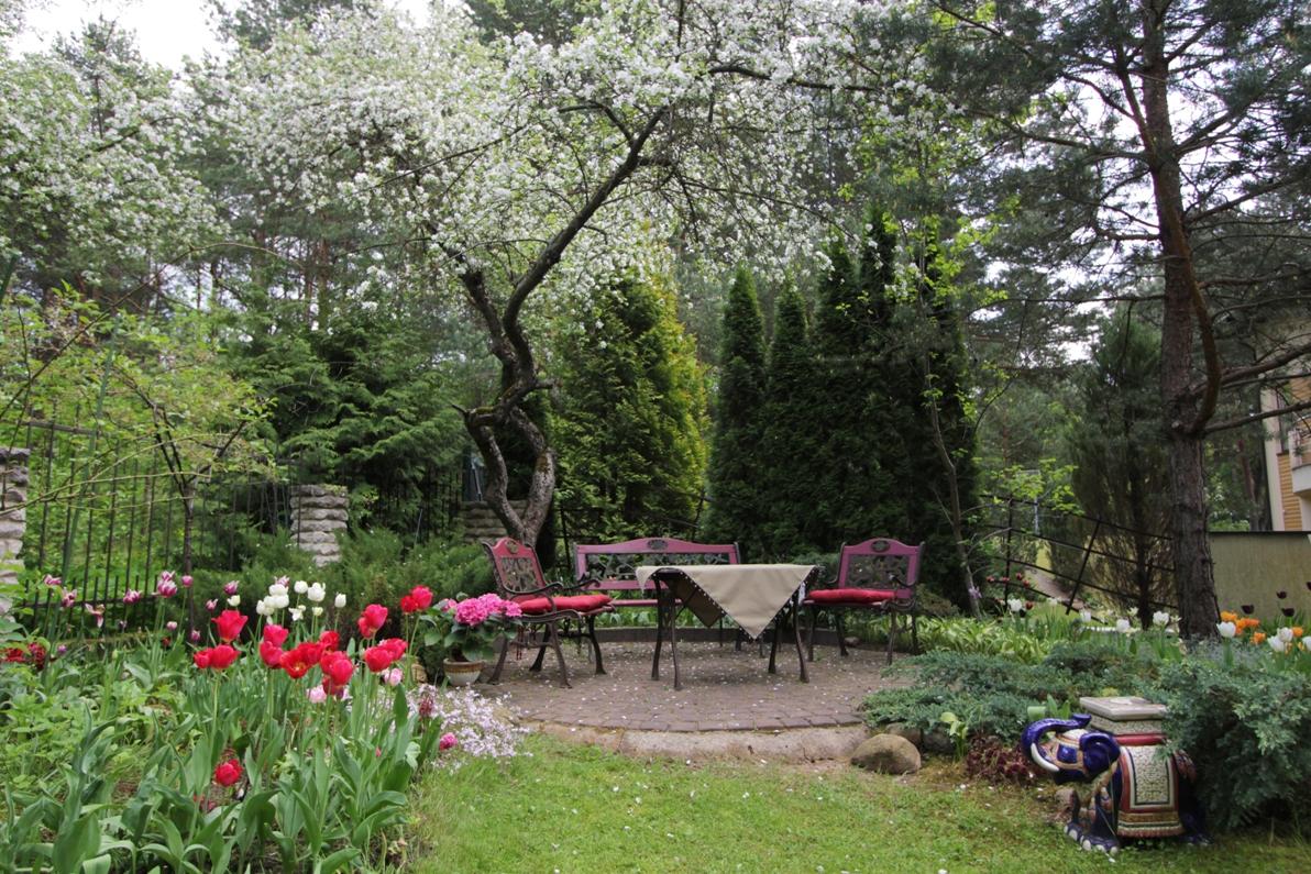 J_architects_Tulip Garden_10