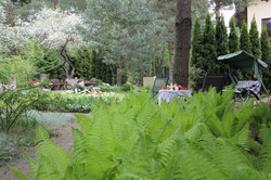 J_architects_Tulip Garden_20
