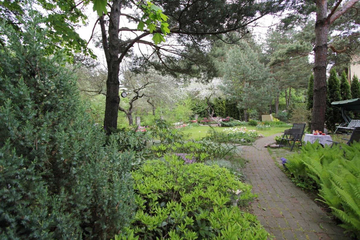 J_architects_Tulip Garden_19