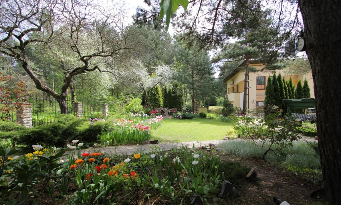 J_architects_Tulip Garden_17