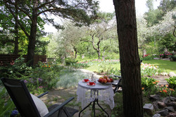 J_architects_Tulip Garden_16