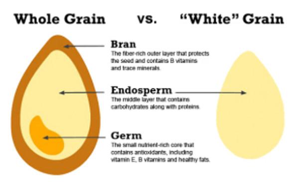 whole-grains-explained1