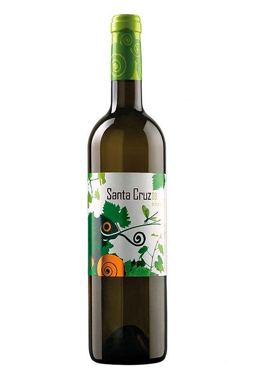 Santa Cruz Verdejo 2019 (750ml)