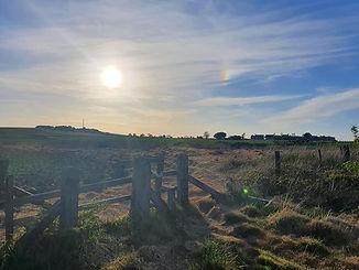 Home Fields.jpb
