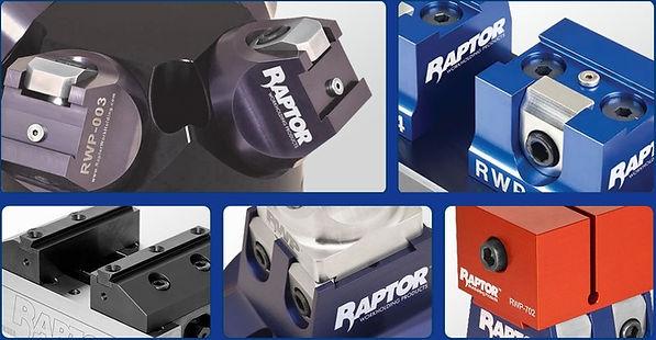 raptor_Easy-Resize.com (1).jpg
