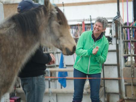 Horses as Mentors for Congruent Leadership