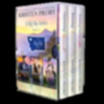 BSAJ2-3Books-COVERVAULT.png
