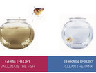 Germ Theory v. Terrain Theory: Why You've Probably Never Heard of Antoine Bechamp