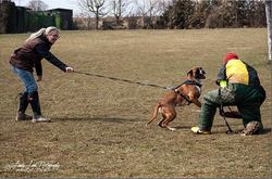 Training am 01.04.2013 (Ostermontag) 7.PNG