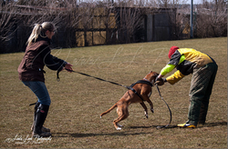 Training am 01.04.2013 (Ostermontag) 5.PNG