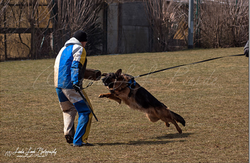 Training am 01.04.2013 (Ostermontag) 2.PNG