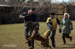 Training am 01.04.2013 (Ostermontag) 12.PNG