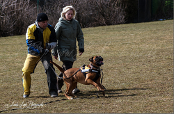 Training am 01.04.2013 (Ostermontag) 11.PNG