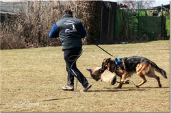 Training am 01.04.2013 (Ostermontag) 1.PNG