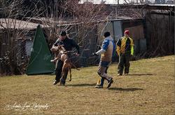 Training am 01.04.2013 (Ostermontag) 18.PNG