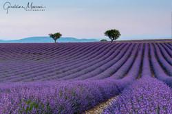 2018 Provence