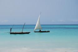 2008 Tanzanie