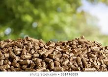 biomass-260nw-381476089.webp