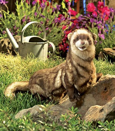 Ferret Puppet by Folkmanis