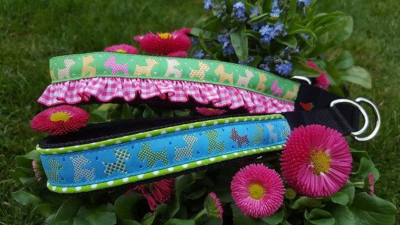 Paprika Halsband Terrierparade, grün oder blau
