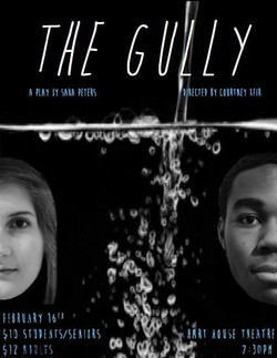 The Gully Poster