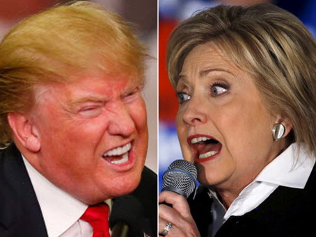 A Barking Donkey. A Forgetful Elephant. Your Election Day Choices.