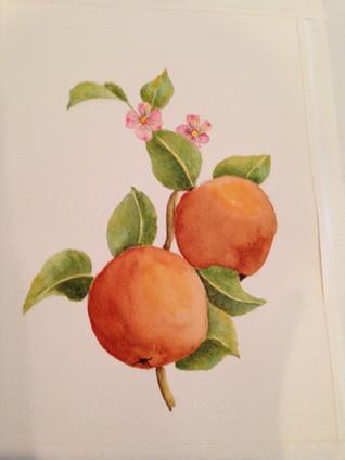 Peaches at Rest
