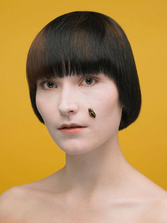 Insecta- Portraits Artistiques - Photogr