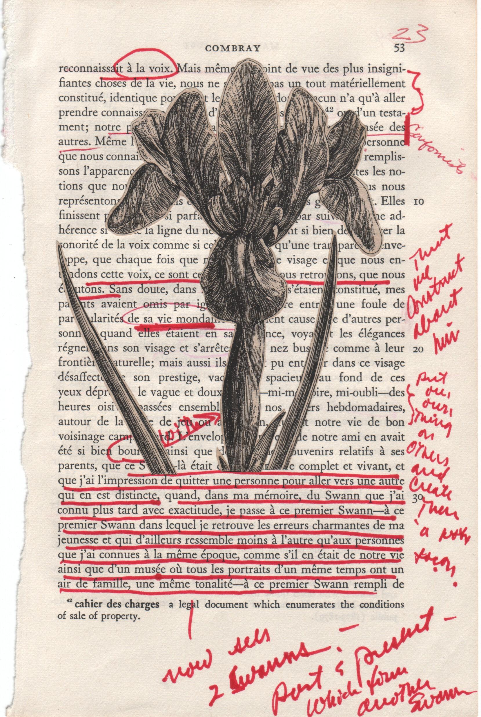 Proust 01
