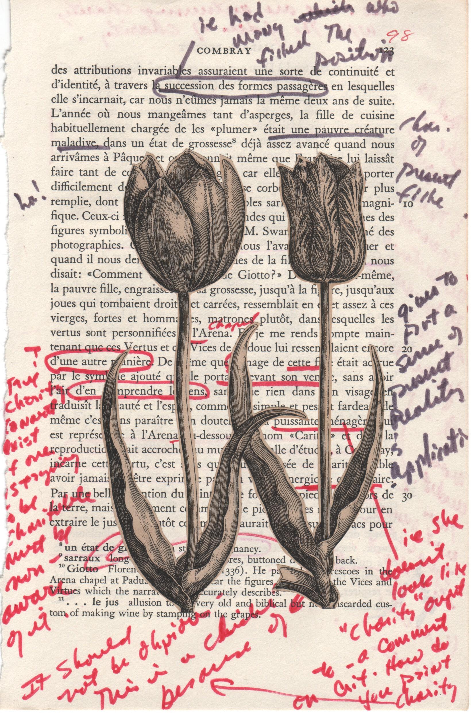 Proust 03