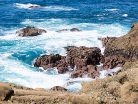 Big Sur Attractions: Tips for Navigating Through State Parks