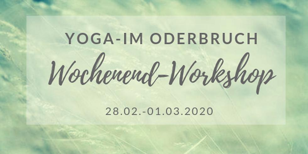 Yoga im Oderbruch - Wochenendworkshop mit Cornelia Fliege (Febr 2020)