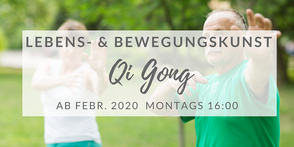 Qi Gong Lebens- & Bewegungskunst (Mo 16:00)