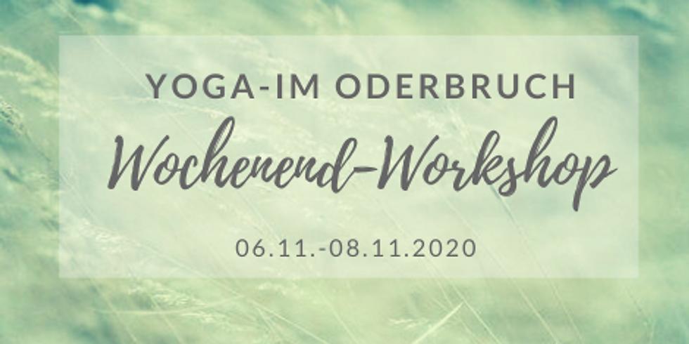 Yoga im Oderbruch - Wochenendworkshop mit Cornelia Fliege (Nov 2020)
