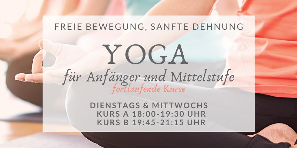 Fortlaufende Yoga -Kurse für Anfänger:innen und Mittelstufe