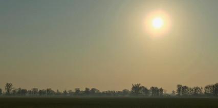 Oderbruchlandschaft Nebel Frühling