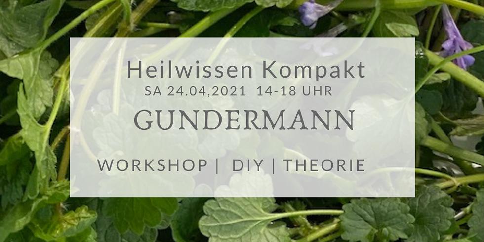Heilwissen kompakt: Gundermann - Sammeln, Kochen, Salbe rühren, Theorie