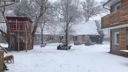 Winter an der Landpraxis Altfriedland Od