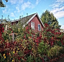 Rotes Holzhaus in Altfriedland, Märkisch Oderland