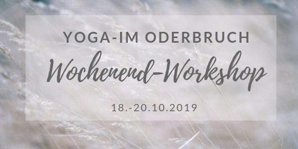 Yoga im Oderbruch - Wochenendworkshop mit Cornelia Fliege (Okt.19)