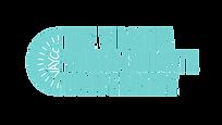 vaycc text based logo.png