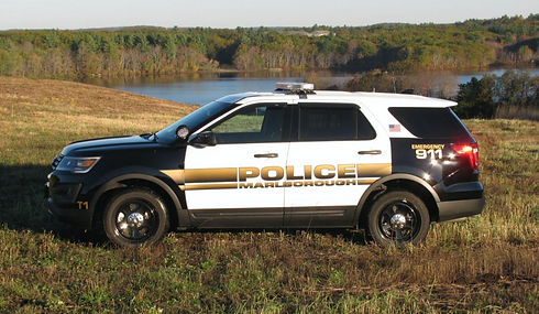 mpd cruiser by lake.png