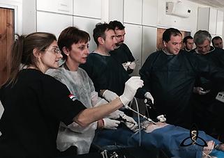 Curso Hands On cirugía laparoscopía endoscopía intervencionismo. teórico práctico intensivo Centro de Entrenamiento. Fundación Triada Mininvasiva. 2016. Cirujano, gastroenterólogo, terapista, radiólogo, instrumentador quirúrgico. Dr. Suarez Anzorena.