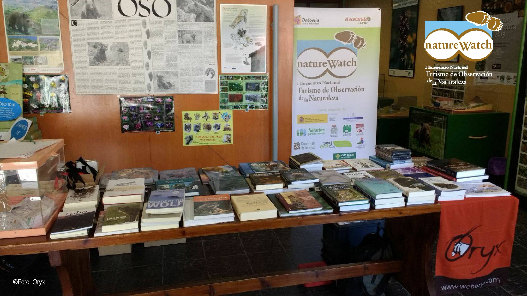 stand libros_Oryx