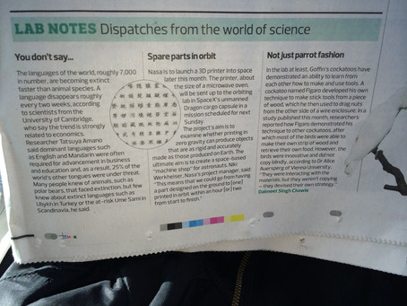 Languages becoming extinct, 3D Printer in Space, Smart birds