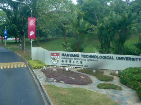 Singapore university revokes second researcher's PhD in misconduct fallout