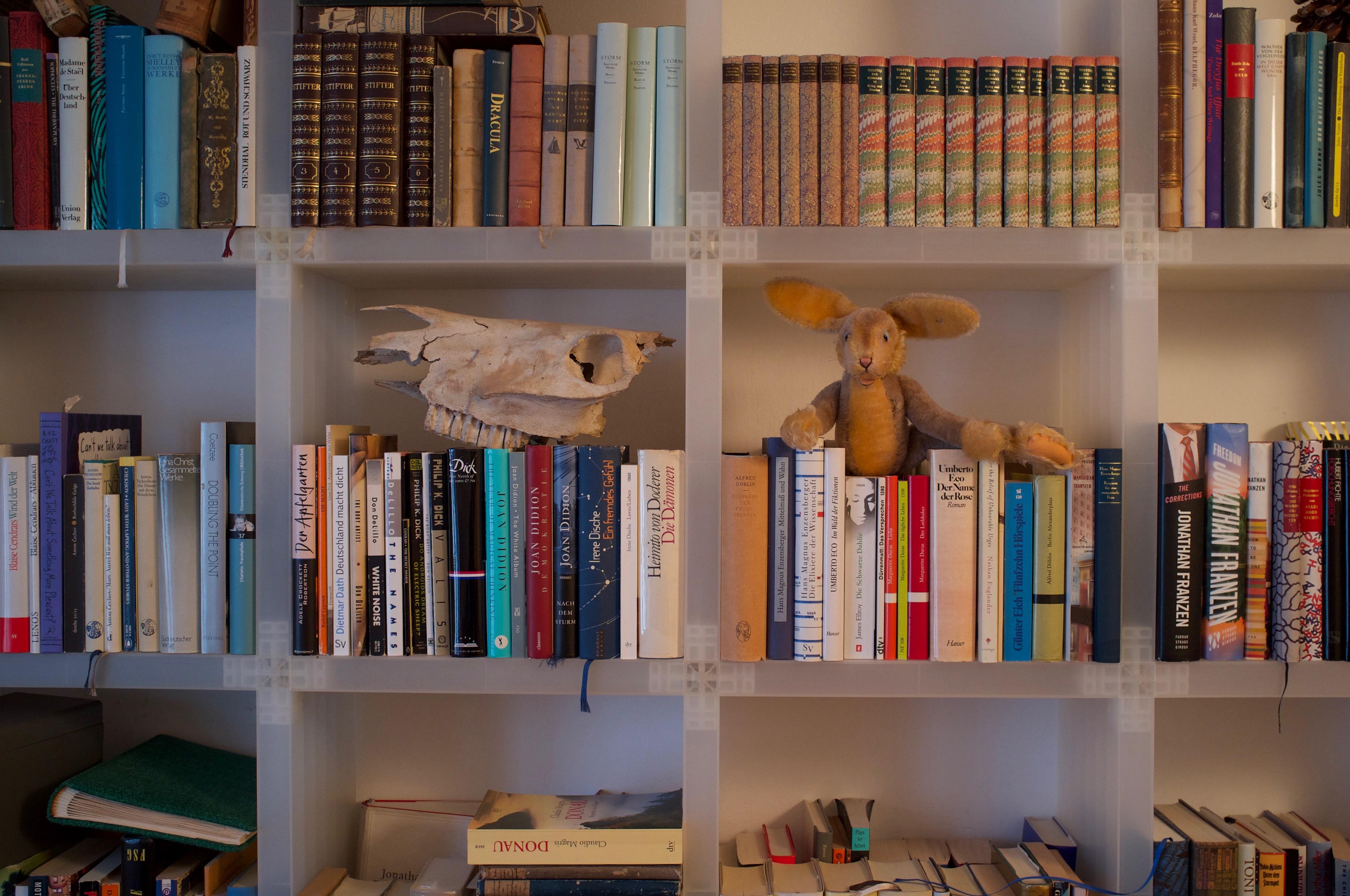 salon_book shelf 2