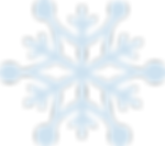 Schneestern_5.png