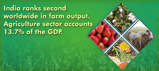 India ranks second in Agriculture
